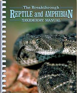 Reptile and  Amphibian taxidermy